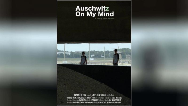 Аушвиц в голове (2013) | Auschwitz on My Mind