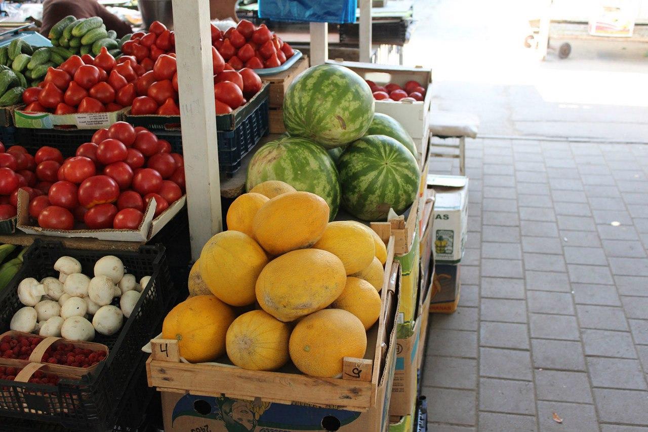 В Ростовской области ветврачи выявили в арбузах пятикратное превышения норм нитратов