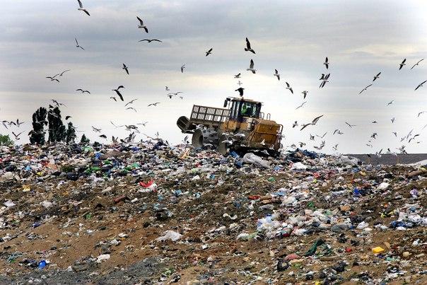 Çöpten Elektrik Üreten İsveç Çöp İthal Ediyor