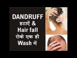 DANDRUFF HAIR FALL हटाएं एक ही Wash में HAIRS get STRONGER in every WASH