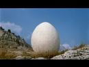 Лиловый шар. (1987).
