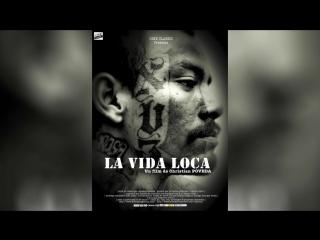Безумная жизнь (2008) | La vida loca