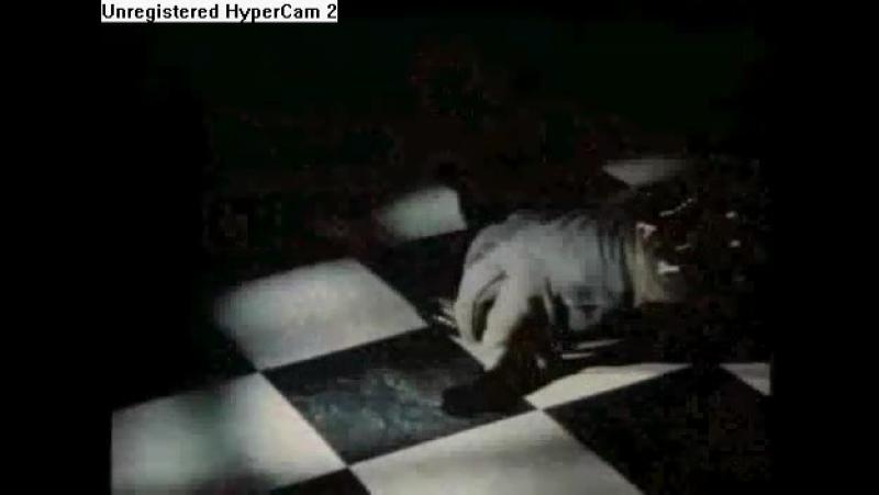 Черная гадюка 2/Black-Adder II (1986) Вступительные титры (сезон 1)