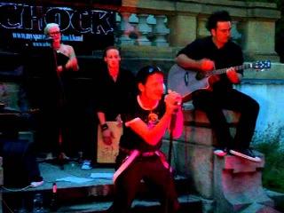 Schock - 09 Gute Nacht unplugged [Set2] (live in Leipzig @ Biergarten mit Ginkgobaum 12.06.2011)