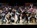 Euphoria in the Moscow State Conservatory P. I. Tchaikovsky (2015)