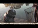 Платная рыбалка в Подмосковье недорого