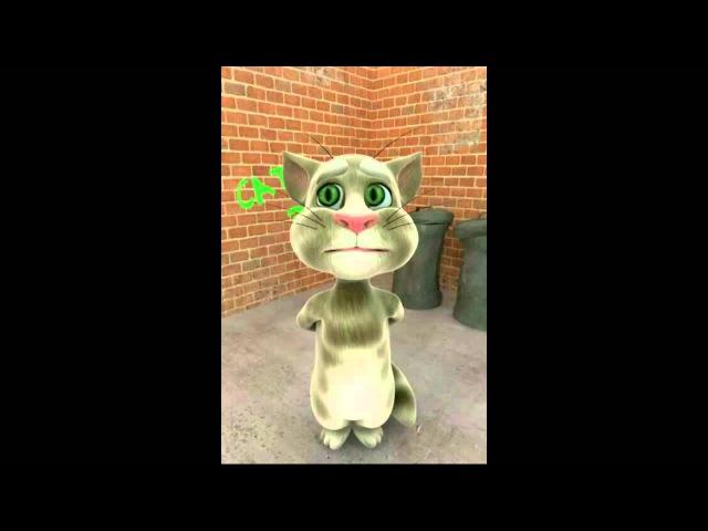 Прикол Очень смешно Кот Том рассказывает стихи умора ржачно забавно