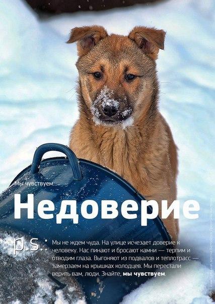 Фото №456241032 со страницы Роксоланы Шперчук