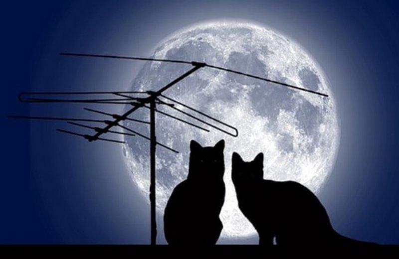 Самую большую Луну века могут увидеть харьковчане