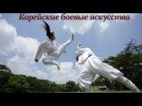 Корейские боевые искусства, какие стили и искусства использовались в Южной Корее