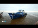 Озеро Ильмень (фильм RTG) Великий Новгород
