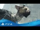 The Last Guardian | Launch Trailer | PS4