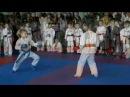 Турнир по карате: кубок Бушидо (Кривой Рог) 26.02.2012