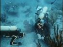 15 Одиссея Жака Кусто Калипсо ищет Атлантиду 1