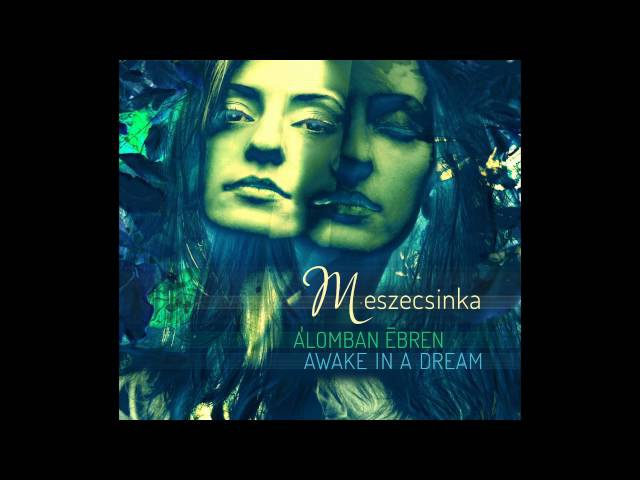 Meszecsinka Awake in a dream full album 2016