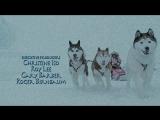 Белый плен (2006) супер фильм 8.5/10