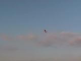 Самый долгий полет модели биплана (авамоделст Олексй Приходько)