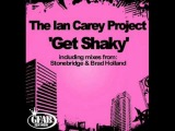 The Ian Carey Project - Get Shaky ( Neico Bootleg Mix )