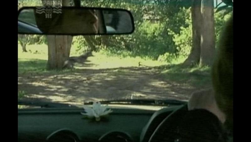 Т/С Собака по имени Снобз 19 серия (2003г)