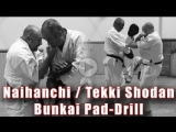 БИЕО Practical Kata Bunkai- Naihanchi - Tekki Shodan Bunaki Pad Drill