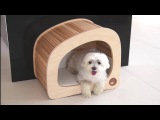 Giomilla: Pet houses for home furnishing