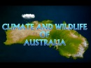 Climate And Wildlife Of Australia - Iken Edu