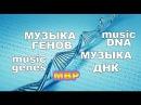 Музыка днк Как поет человеческий ген MBP translation mRNA