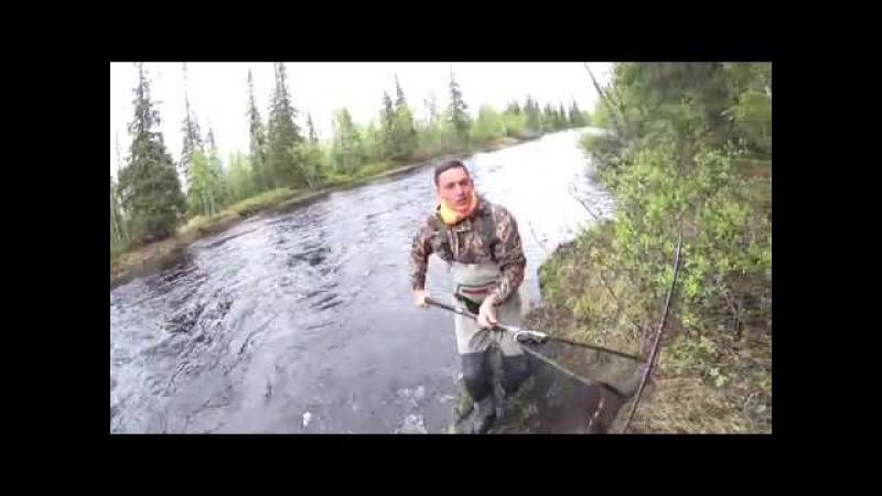 Рыбалка на семгу. Кольский п-ов.Май 2016 года.