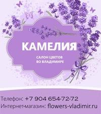 Цветов сезонов интернет магазин цветов во владимире с доставкой цветов магистральной авиацентр