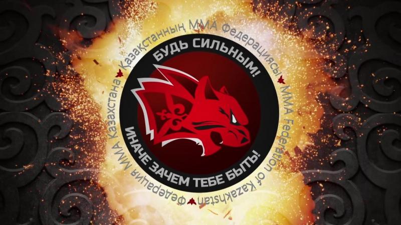 MMA в Петропавлоске 05.06.16 Битва за север2