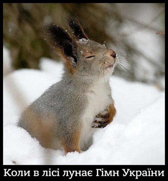 """""""Сегодня Украина на постсоветском пространстве является первой страной, которая пытается измениться"""", - Гройсман - Цензор.НЕТ 9537"""