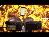 Newsshooter Sony a6500 overheating test (vs. a6300)