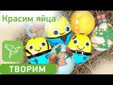 Красим яйца. Как покрасить оригинально яйца на Пасху. 5 безопасных способов