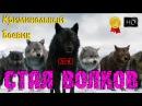 Решительный такой Боевик Стая Волков Лучшие Новинки 2016 Криминальная Россия
