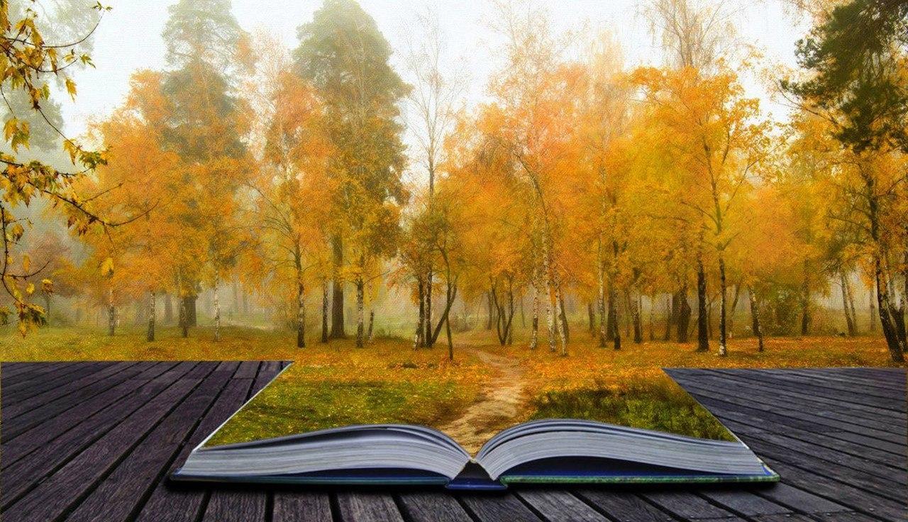А что вы читаете этой осенью?