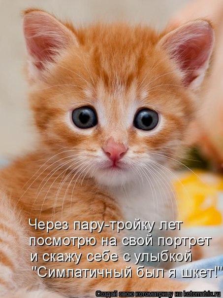 https://pp.vk.me/c636029/v636029864/550b/owKav0vYBQQ.jpg