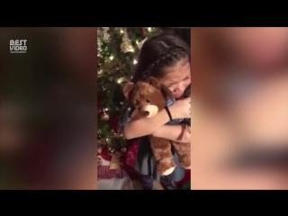А вот и самое трогательное видео этого Рождества.