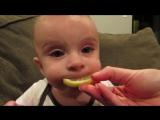 Малюки вперше куштують лимон