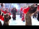 Ursul lui Gavrila din Asau jud Bacau