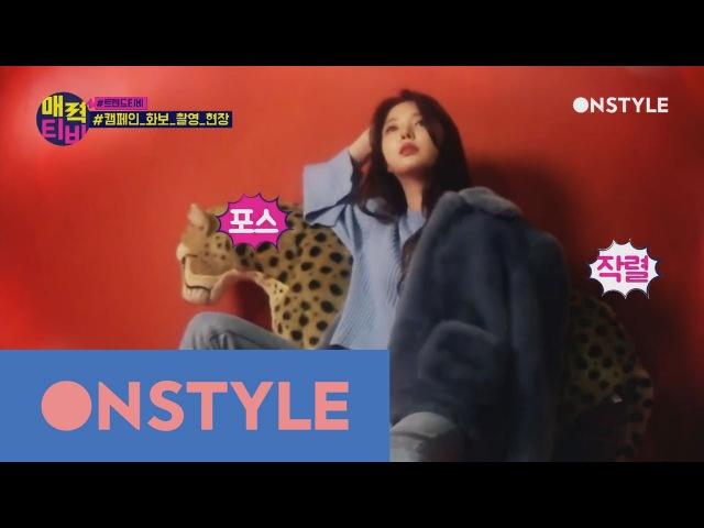 AttractionTV [트렌드TV] 예쁨_보스 엄현경 과 만능돌 매드타운_조타의 동물보호 캠페인