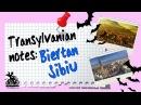 Путешествие в Румынию. Трансильвания, часть 3. Как мы посетили уникальную деревушку Бьертан и погуляли по Сибиу - старой столице Трансильвании.
