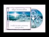 Аудиокнига Звук Безмолвия Дмитрий Лапшинов