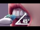 Чистим зубы правильно, как чистить зубы от налета и камня.