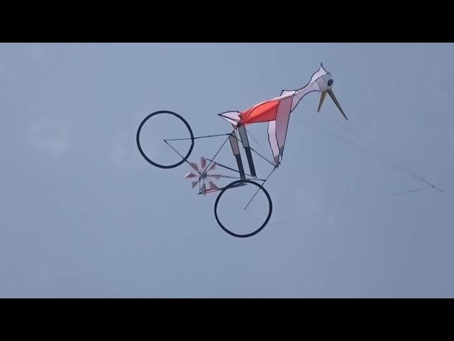 Bicycle Kite