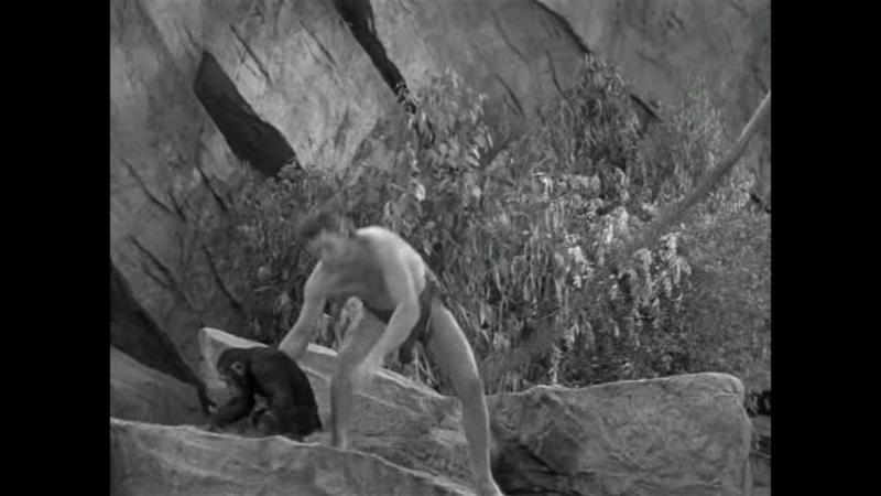 Тайное сокровище Тарзана US 1941 2 части Джонни Вайсмюллер Морин О'Салливан Джон Баклер Беннита Хьюм боевик приключения