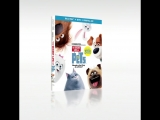 The Secret Life Of Pets: Coming Soon on Digital HD, Blu-ray and DVD!