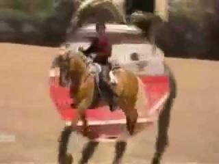 Лошадь Матадор Мерлин