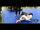 Ultimate Rubber Guard Highlights by Cora Sek