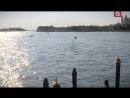 Донна Леон. Расследование в Венеции (11 серия из 17) / Donna Leon / 2000-2009