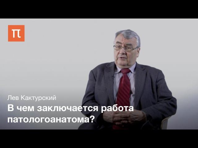 Роль патологической анатомии в медицине - Лев Кактурский, д.м.н., руководитель НИИ морфологии человека
